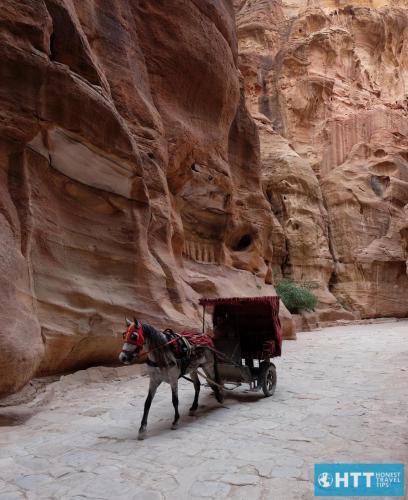 Horse, Siq, Petra