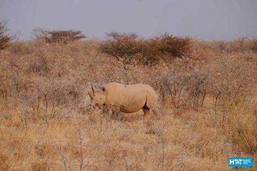 Namibia-11