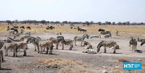 Northern Namibia Travel Tips + Photos - HonestTravelTips com